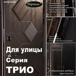 """Вхідні двері для вулиці """"Порталу"""" серії """"Тріо"""""""
