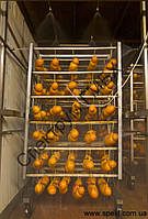 Охлаждение колбас (установка для душирования колбас), фото 1