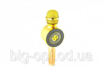 Микрофон DM Karaoke WS668