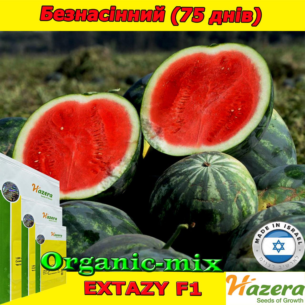 Семена, арбуз бессемянный, ЭКСТАЗИ F1, ТМ Нazera (Израиль) проф. пакет 500 семян