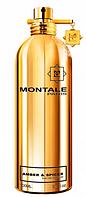 Парфюмированная вода унисекс Montale Amber & Spices 100ml(test), фото 1