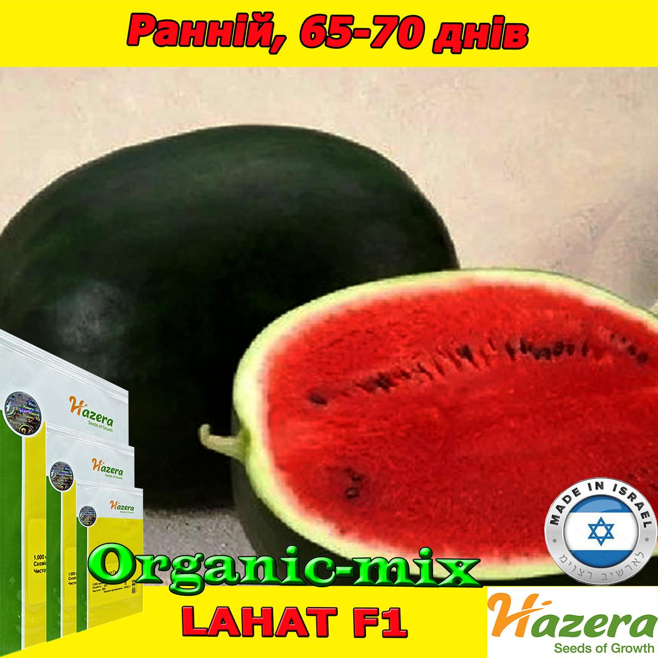 Семена, арбуз черный, ЛАХАТ F1 / LAHAT F1 ТМ Hazera (Израиль), 500 семян