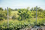 Сетка Рабица оцинкованная 60х60, Ø 2,5 мм, высота 1,20 м, рулон 10 м, фото 10