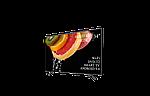 """Качественный телевизор Hisense 34"""" Smart-TV/Full HD/DVB-T2/USB (1920×1080) Android 9.0, фото 3"""