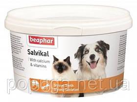 Минеральная смесь Beaphar Salvikal для зубов и костей кошек и собак 250 г