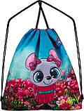 Рюкзак шкільний для дівчаток Winner One R3-221 Full Set, фото 7