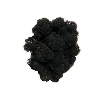 Стабилизированный мох Черный Ягель Норвежский 1 кг Green Ecco Moss