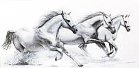"""Набор для вышивания крестом """"Luca-s"""" B495 Белые лошади"""