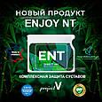 """""""ENT"""" (новый Энджой NT) - комплексная защита суставов (new EnjoyNT), фото 3"""