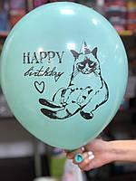 Шар воздушный С Днём рождения! веселый кот
