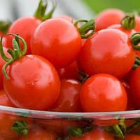 Садовая Жемчужина (Черри) семена томата  (Satimex, Германия)