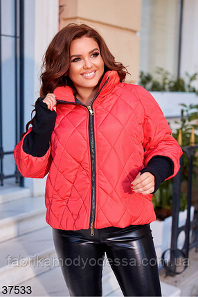 Красная куртка женская евро-зима плащевка Canada евро-пух батал Размеры: 50-52, 54-56, 58-60, фото 2