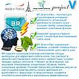 """""""BR"""" (новый Брэйн-О-Флекс) - для улучшения работы мозга и памяти (new Brain-O-Flex), фото 6"""