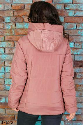 Короткая куртка женская весна-осень деми цвет темная-пудра батал Размеры: 50.52.54., фото 2