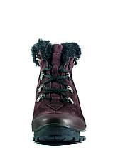 Ботинки зимние женские MIDA 24830-660Ш бордовые (36), фото 2
