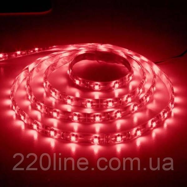 Светодиодная лента Feron SANAN LS604 60SMD/м 12V IP65 красный