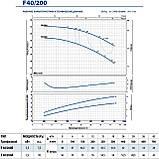 """Центробежный насос промышленный Pedrollo F 40/200A стандарта """"EN 733"""", фото 9"""