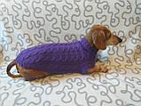 Фиолетовый свитер для таксы или маленькой собаки, фото 4
