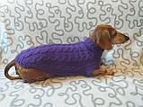 Фиолетовый свитер для таксы или маленькой собаки, фото 5
