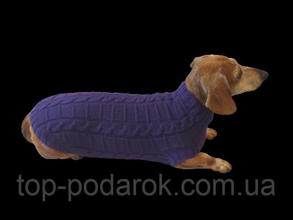 Фиолетовый свитер для таксы или маленькой собаки
