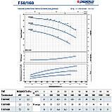 """Центробежный насос промышленный Pedrollo F 50/160B стандарта """"EN 733"""", фото 9"""