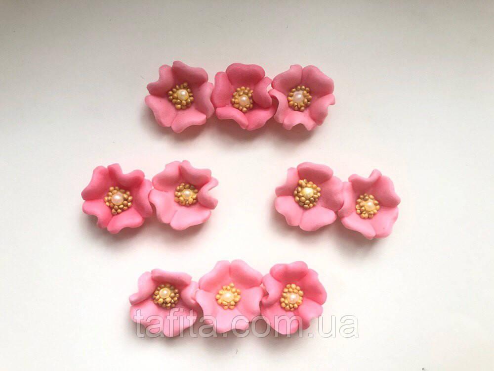 Мальва мини розовая
