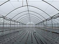 Пленка тепличная SOTRAFA прозрачная TRC с АК + IR + EVA (150 мкм) шириной 16 м.
