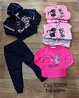 Спортивный велюровый костюм для девочек, Seagull, 1-5 рр