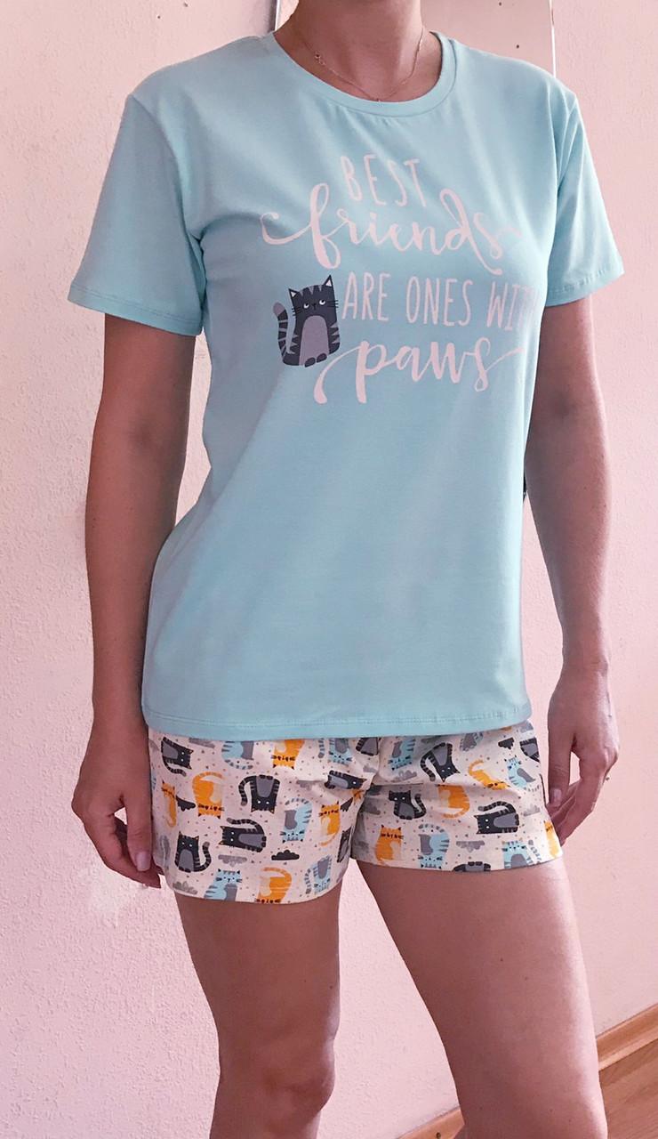 Комплект шорты с футболкой ТМ Antana мод 69 Коты хлопок