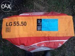 Семена подсолнечника 5550 LG среднеранний. LG/Лимагрейн/Limagrain (импорт) 2014г.