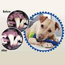 Зубная щетка для собак Сhewbrush СКИДКА, фото 2