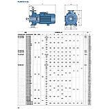 """Промышленный электронасос центробежный Pedrollo F 100/200A стандарта """"EN 733"""", фото 3"""
