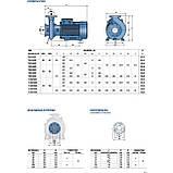 """Промышленный электронасос центробежный Pedrollo F 100/200A стандарта """"EN 733"""", фото 5"""