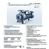 """Промышленный электронасос центробежный Pedrollo F 100/200A стандарта """"EN 733"""", фото 6"""