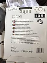 CONCORDE 60, фото 2