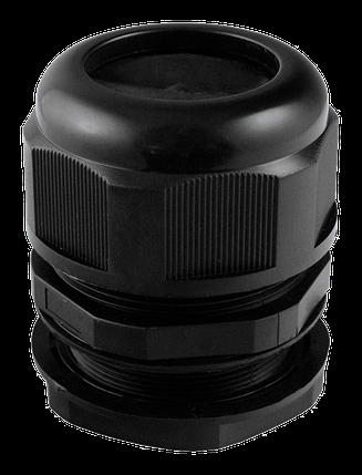 Сальник PG 42 d32-38мм IP68 черный TechnoSystems TNSy5502549, фото 2