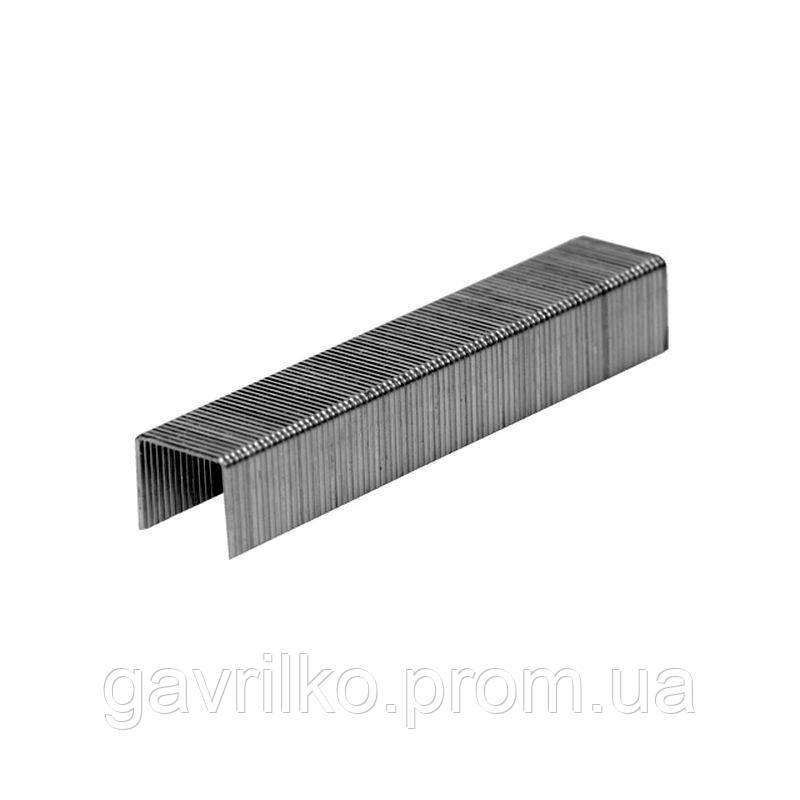 Скобы 6×11.3мм каленые 1000шт GRAD (2812165)