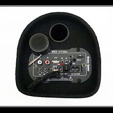 Car Speaker Subwoofer ZPX ZX-6SUB 600Вт | Активный сабвуфер в автомобиль, фото 2