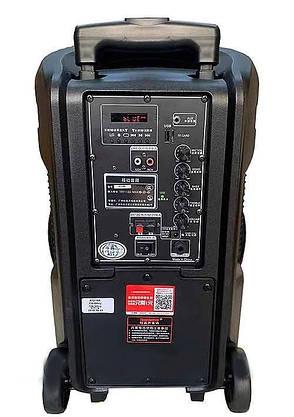 Акустична портативна колонка комбік Temeisheng A 12-18А   Два мікрофони, Bluetooth, USB, фото 2