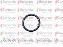 022-027-30-2-2 Кольцо уплотнительное, Беларусь