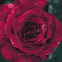 """Картина по номерам. """"Роза"""" 40*40см KHO3038, картины по номерам,раскраски с номерами,рисование по"""