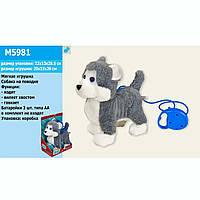 Музыкальная интерактивная собачка на поводке M5981 Хаски