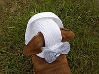 Летняя шапка для маленьких собак и котов,панамка для таксы, фото 1