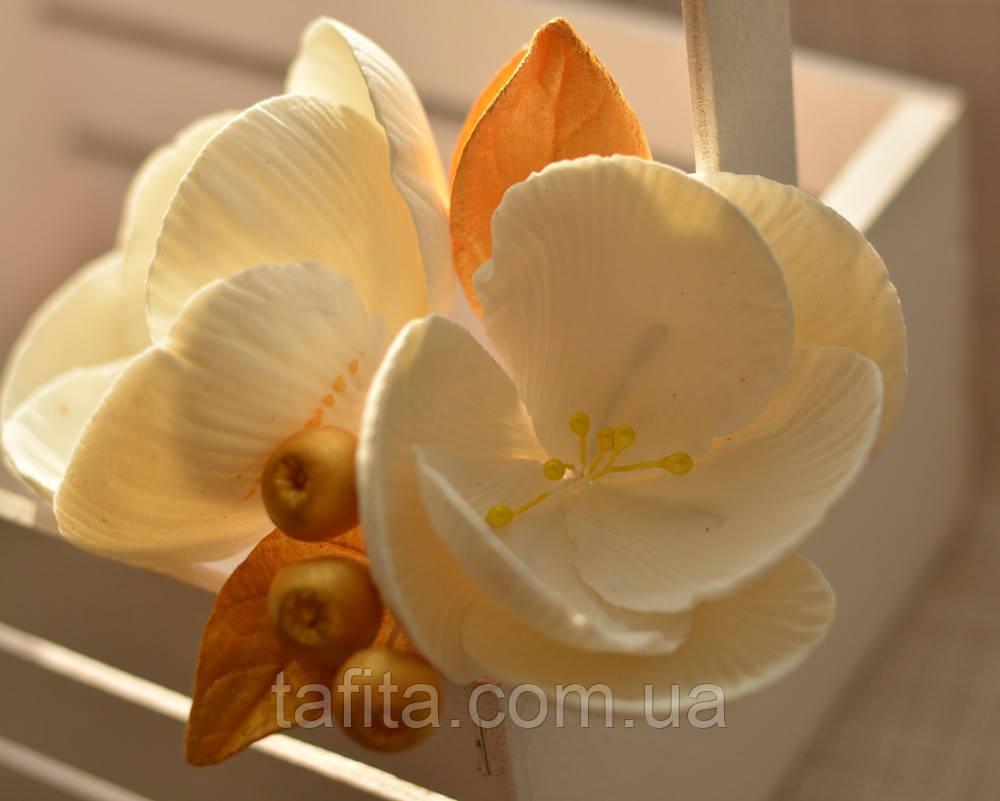 Магнолия белая с золотыми листьями