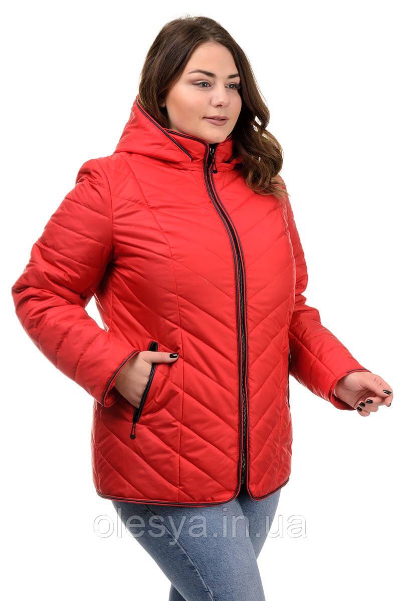 Женская демисезонная стеганая куртка Размеры 50- 64 ТОП продаж!