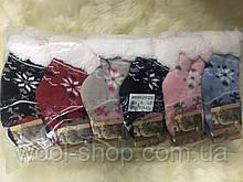Носки тапочки детские EMI ROSS