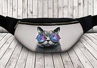 Сумка на пояс кот в цветных очках