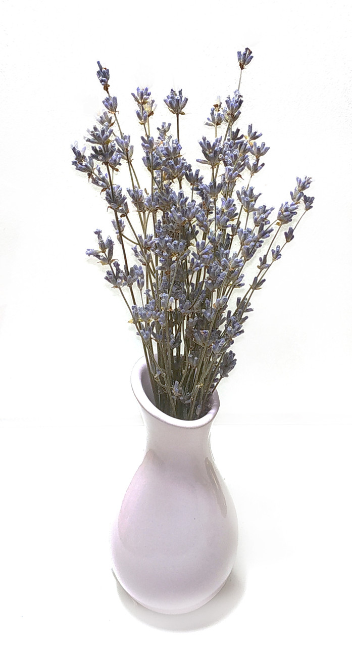 Букет лаванды /сухоцвет натуральной лаванды/