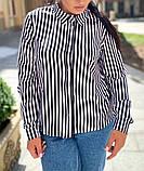 Женская блузка рубашка в полоску ткань софт длинный рукав размер: 50-52,54-56, фото 2