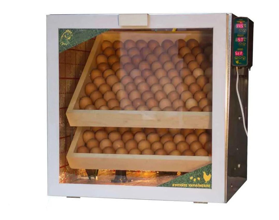 Інкубатор на 200 яєць з регулятором вологості купити